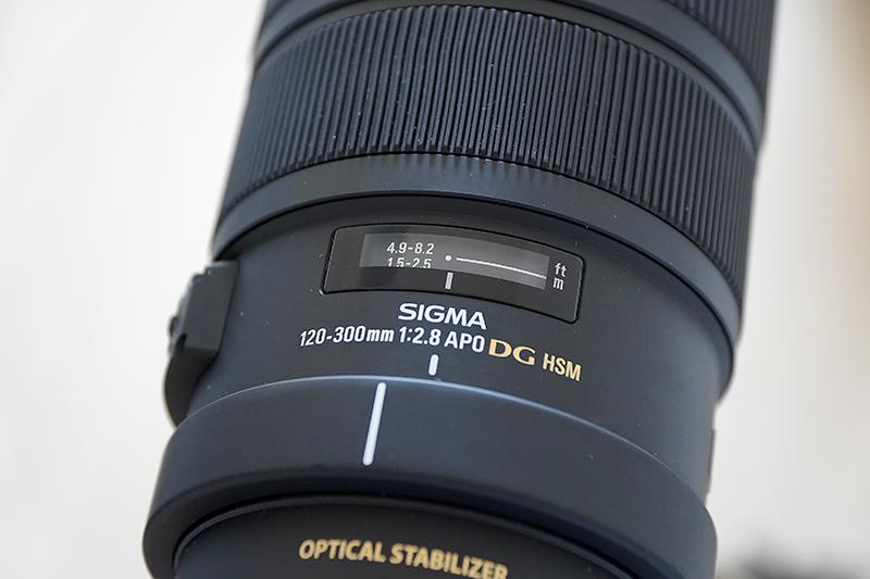 [レビュー] SIGMA 120 – 300mm F2.8 APO DG OS HSM