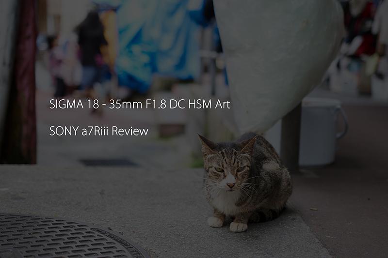 [レビュー] SIGMA 18 – 35mm F1.8 DC HSM Art & SONY a7Riii @ 沖縄国際通り商店街